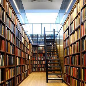 Библиотеки Бавлов